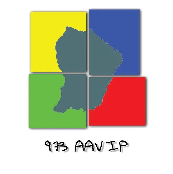 Logo 973AAVIP